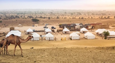Jaisalmer safari